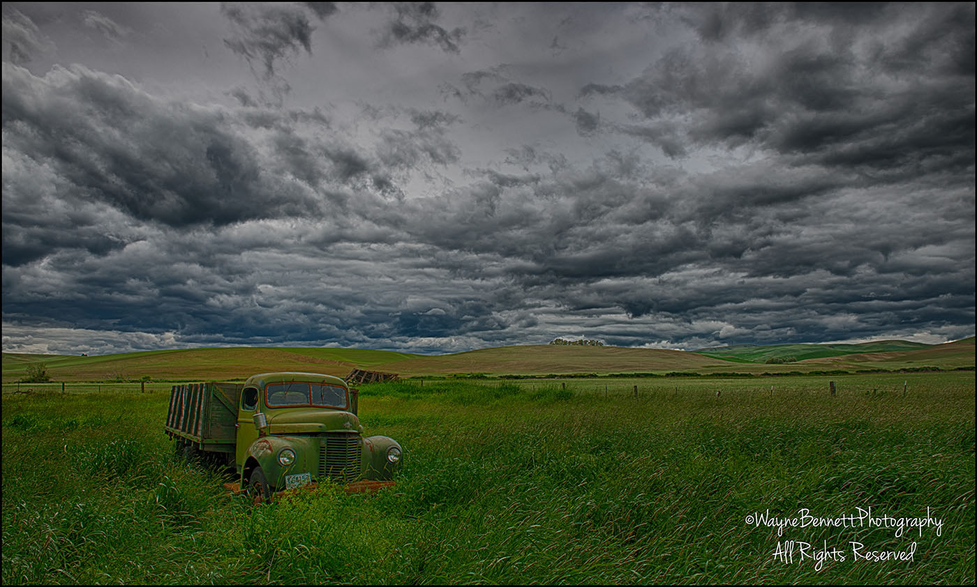 Abandoned Truck in Field