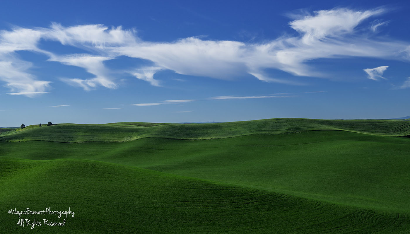 Rolling Hills and Sky
