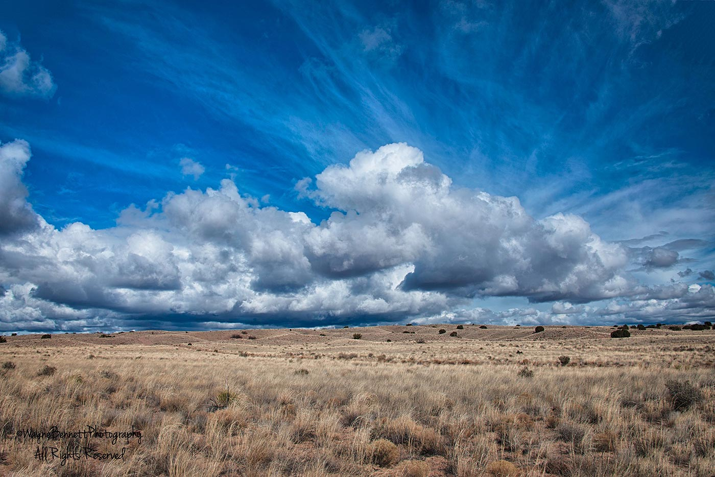 New Mexico-Clouds and Prairie